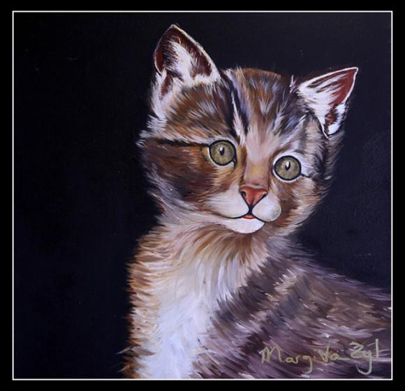 sussas-kitty-650